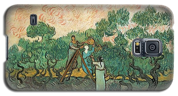 Impressionism Galaxy S5 Case - The Olive Pickers by Vincent van Gogh