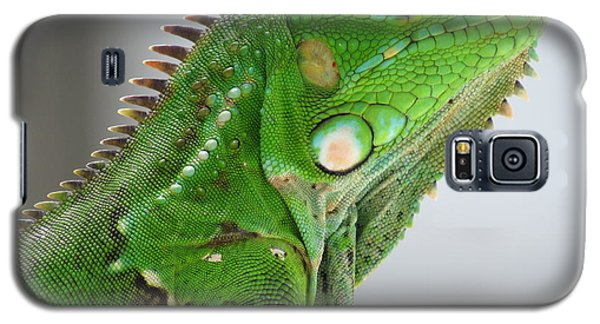 The Omnivorous Lizard Galaxy S5 Case