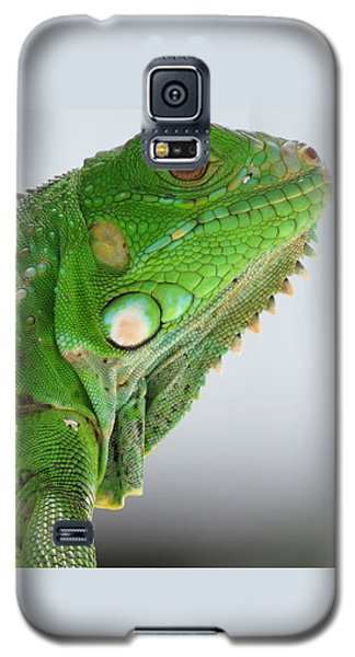 The Omnivorous Lizard Galaxy S5 Case