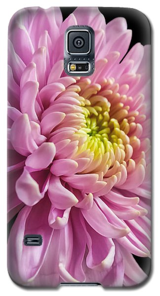 The One And Only Dahlia  Galaxy S5 Case
