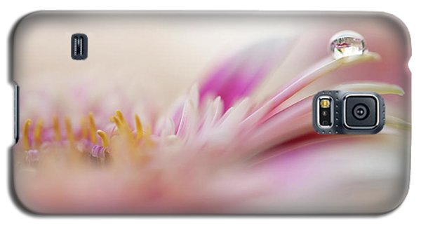 Galaxy S5 Case featuring the photograph The One. Macro Gerbera by Jenny Rainbow