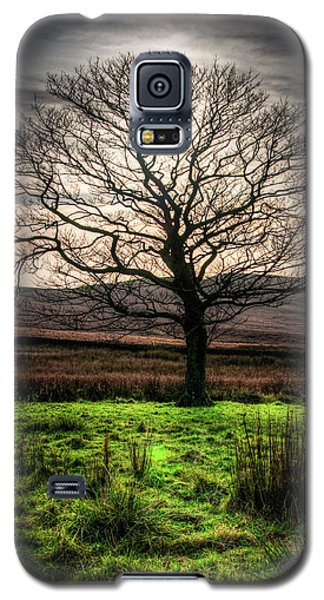 The One Tree Galaxy S5 Case