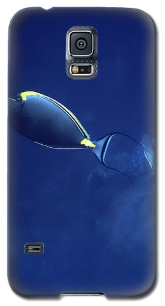 The Orangespine Unicornfish And The Deep Blue Sea Galaxy S5 Case