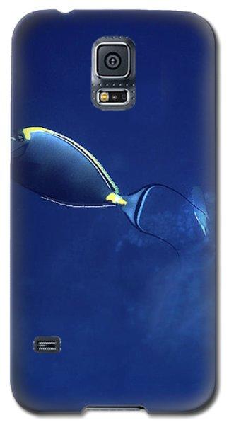 The Orangespine Unicornfish And The Deep Blue Sea Galaxy S5 Case