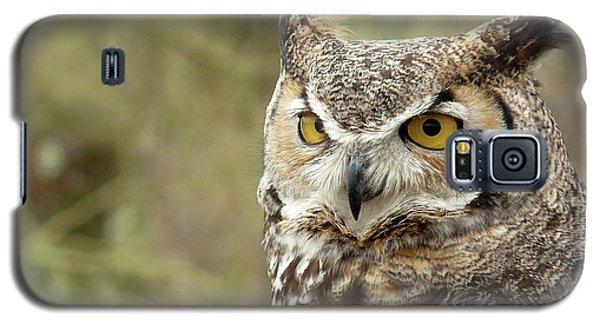 The Owl Galaxy S5 Case
