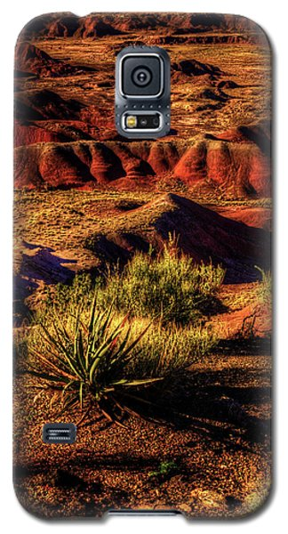 The Painted Desert From Kachina Point Galaxy S5 Case