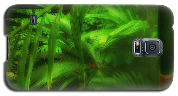 Galaxy S5 Case featuring the photograph The Palm Forest  by Connie Handscomb