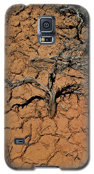 The Parched Earth Galaxy S5 Case