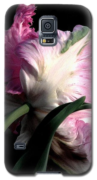 The Parrot Tulip Queen Of Spring Galaxy S5 Case