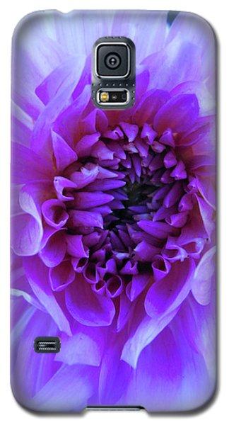 The Passionate Dahlia Galaxy S5 Case