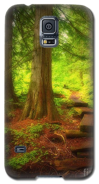 The Path Through The Forest Galaxy S5 Case