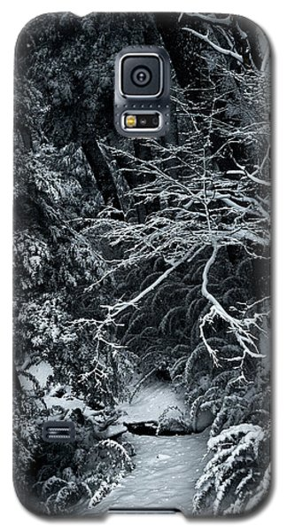 The Path To The Frozen Forest In The Argentine Patagonia Galaxy S5 Case