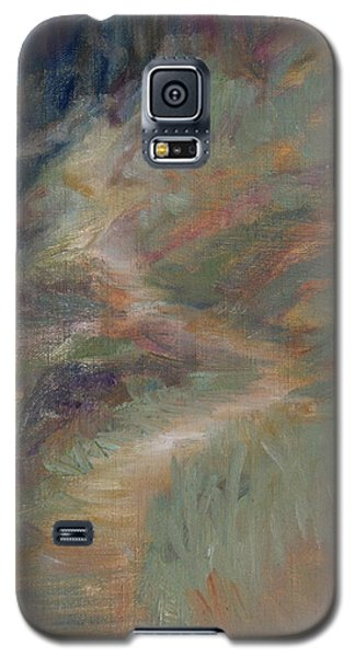 The Pathway Galaxy S5 Case