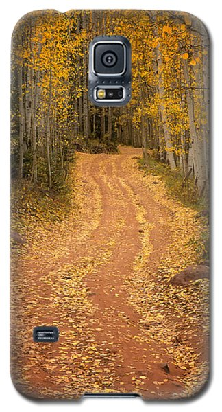 The Pathway To Fall Galaxy S5 Case by Ronda Kimbrow