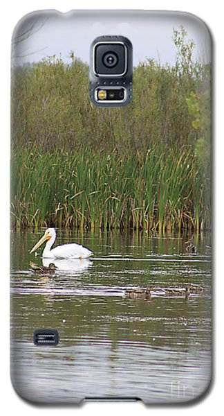 Galaxy S5 Case featuring the photograph The Pelican And The Ducklings by Alyce Taylor