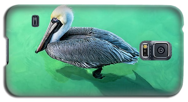 The Pelican And The Shark Galaxy S5 Case
