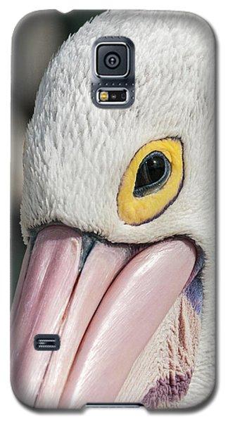 The Pelican Look Galaxy S5 Case by Werner Padarin
