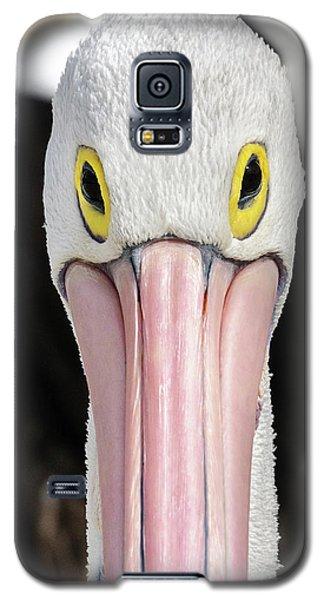 The Pelican Stare Galaxy S5 Case