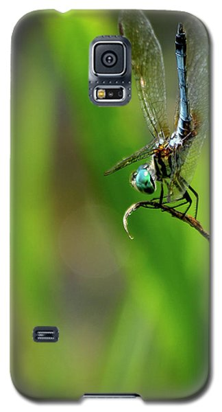 Galaxy S5 Case featuring the photograph The Performer Dragonfly Art by Reid Callaway