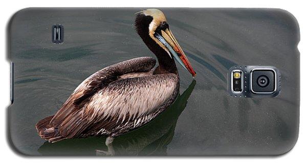 Galaxy S5 Case featuring the photograph The Peruvian Pelican #2 by Aidan Moran