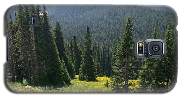 The Pine Trees Galaxy S5 Case