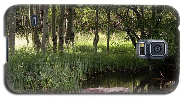 The Pond  Galaxy S5 Case
