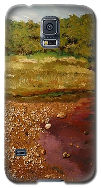 The Pond Galaxy S5 Case