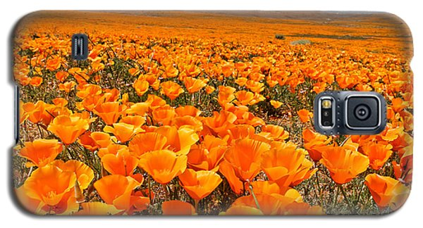 The Poppy Fields - Antelope Valley Galaxy S5 Case