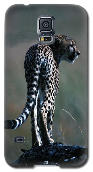 Galaxy S5 Case featuring the photograph The Predator by Carl Purcell