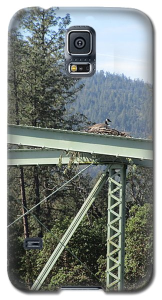 Galaxy S5 Case featuring the photograph The Pretender by Marie Neder