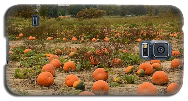 The Pumpkin Farm Two Galaxy S5 Case
