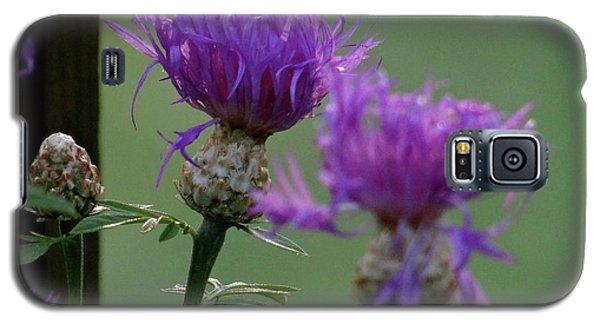 The Purple Bloom Galaxy S5 Case