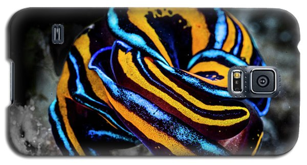 The Puzzle Galaxy S5 Case