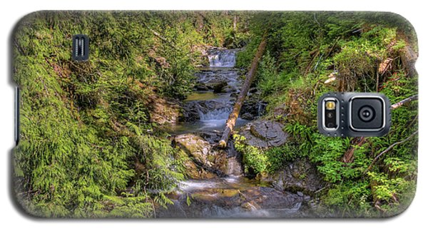 The Quinault Stream 2 Galaxy S5 Case by Richard J Cassato