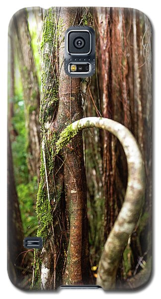 The Rainforest Galaxy S5 Case