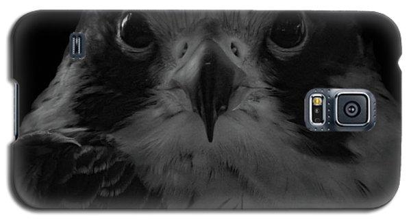 The Raptors, No. 10 Galaxy S5 Case