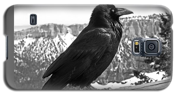 The Raven - Black And White Galaxy S5 Case
