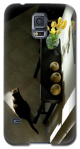 The Reception Hall Galaxy S5 Case