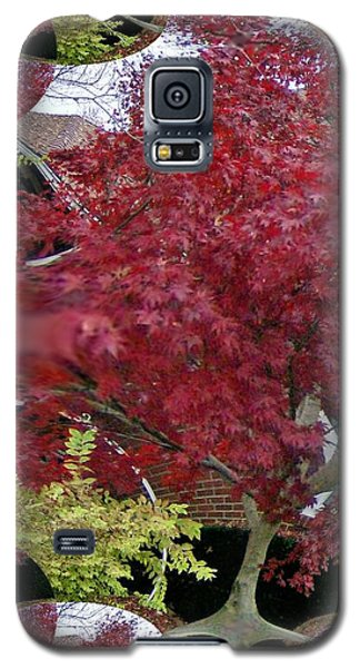 Galaxy S5 Case featuring the photograph The Red Bushes by Skyler Tipton