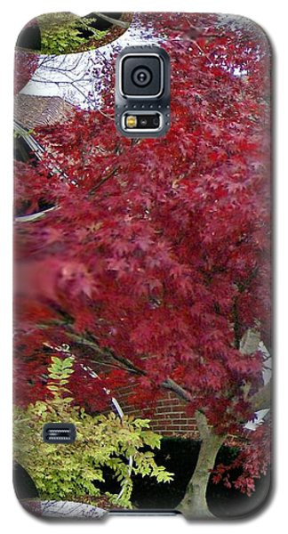 The Red Bushes Galaxy S5 Case by Skyler Tipton