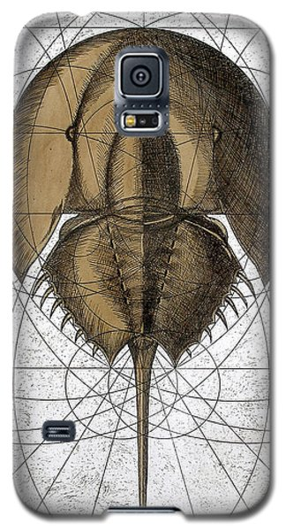The Remnant Galaxy S5 Case