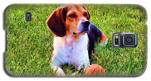The Reserved Beagle Galaxy S5 Case