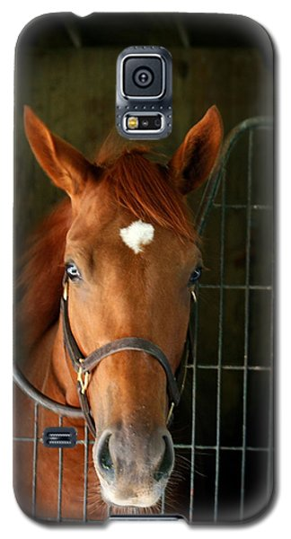 Galaxy S5 Case featuring the photograph The Roan by Cathy Harper