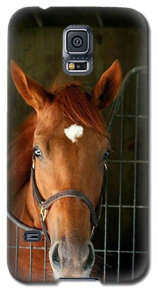 The Roan Galaxy S5 Case