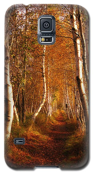 The Road Not Taken Galaxy S5 Case