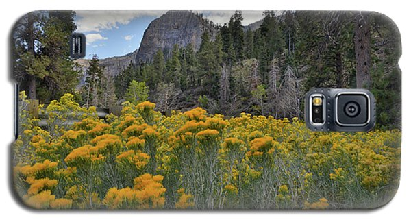 The Road To Mt. Charleston Natural Area Galaxy S5 Case