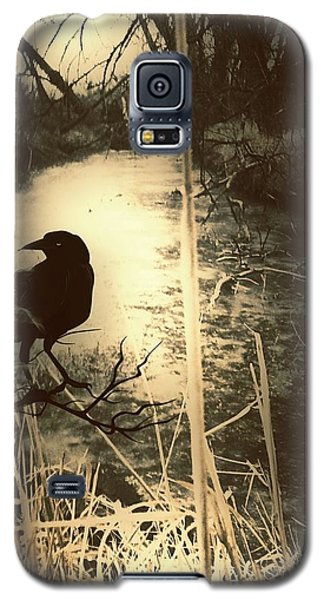 The Robin And The Wren Are Flown. Winter Crow Galaxy S5 Case
