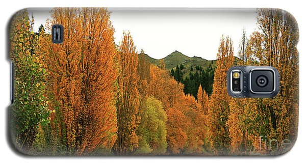 The Russet Tones Of Fall Galaxy S5 Case
