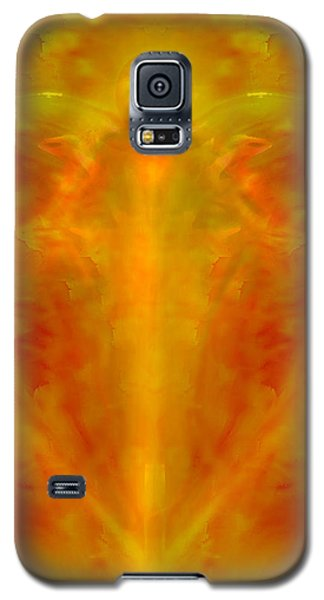 The Sacred Heart Of Jesus Galaxy S5 Case