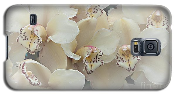 The Secret To Orchids Galaxy S5 Case by Sherry Hallemeier